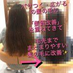 [埼玉 志木]髪質改善をして改善されてきた髪にヘアエステでメンテナンスを