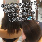 [埼玉 志木]根元には縮毛矯正。毛先には髪質改善。で艶やかにまとまる髪に
