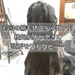 [埼玉 志木]梅雨の前に!前回から数ヵ月「根元がのびてきて気になってきた」