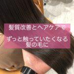 [埼玉 志木]髪質改善+定期的なケアの積み重ねで。ずっと触っていたくなる髪の毛に